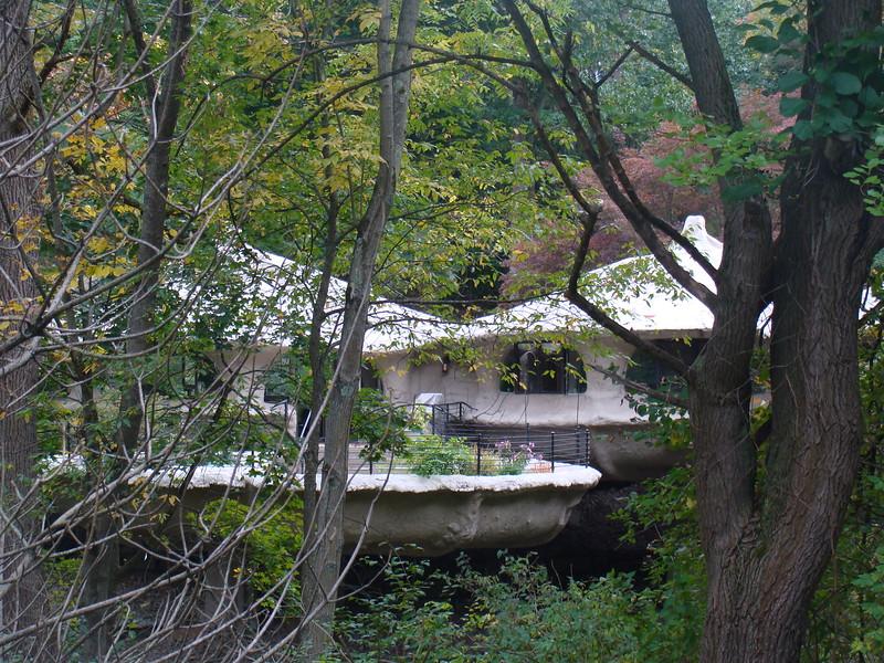 Mushroom House 1