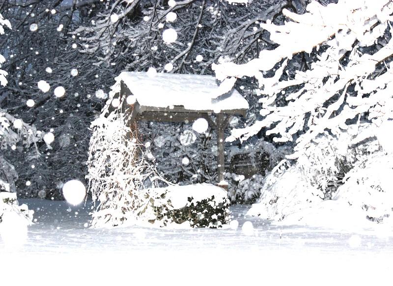Winter Wonderland Wishing Well