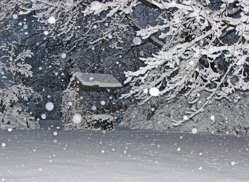 Wishing Well in Winter