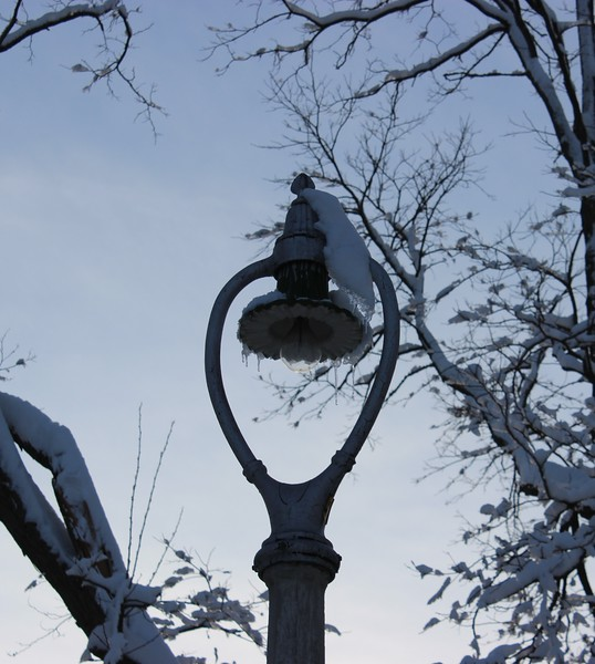 Landmark Harp Streetlight in Winter