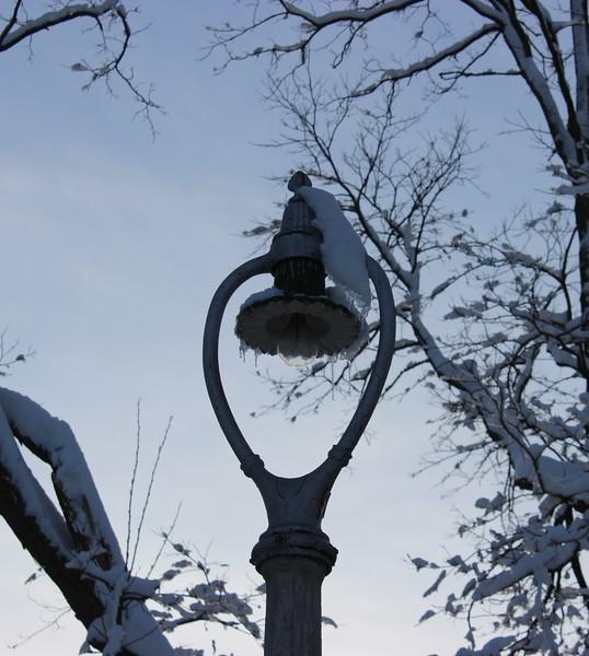 Landmark Harp Streetlight in Winter