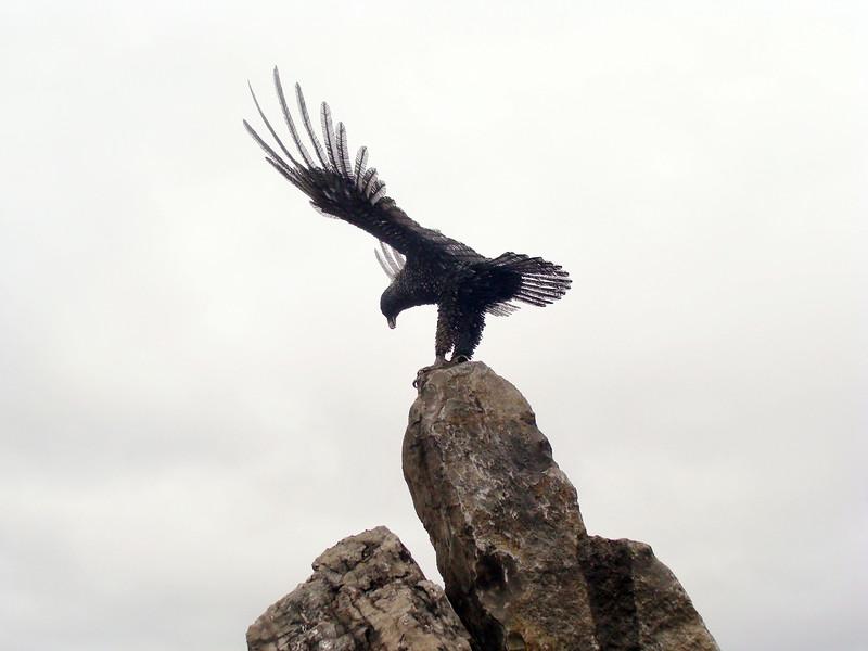 Eagle Atop Boulders