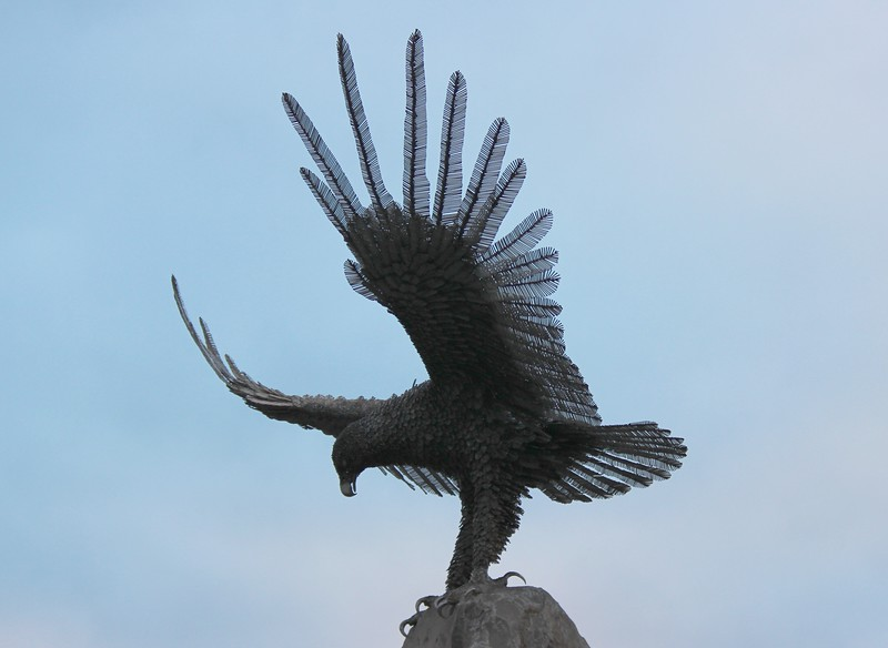 Eagle Lands Atop the Brighton Veterans Memorial