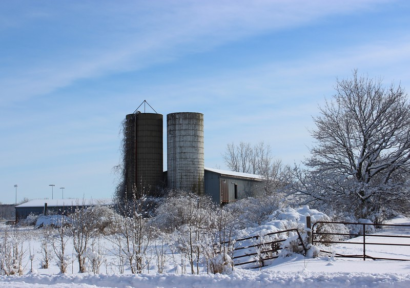 Silos at Groos Farm