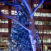 Lincoln Center tree lighting