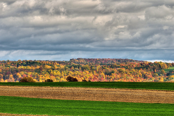 Falls Colors in Skaneateles, NY