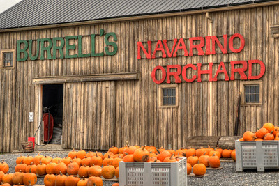 Navarino Orchard in Syracuse, NY
