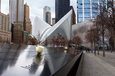 World Trade Center Memorial, Oculus
