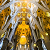 Ceiling of Sagrada Familia