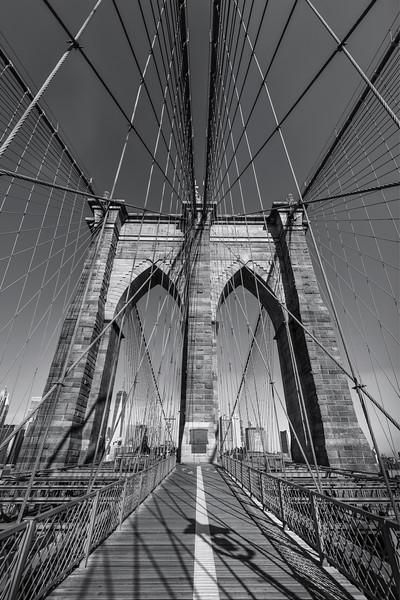 The Brooklyn Net