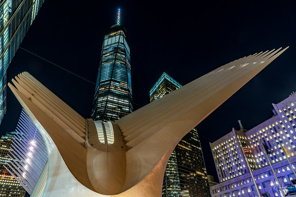 Oculus and World Trade Center