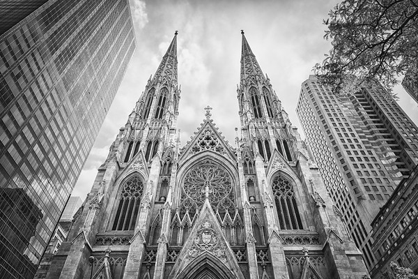 St. Patrick's Cathedral - Black and White