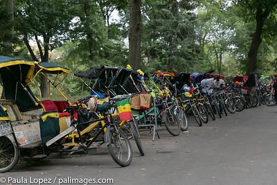 Central Park pedal carts