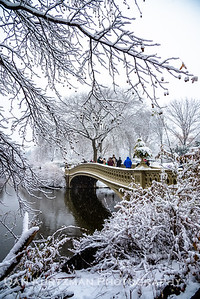First Snow at Bow Bridge, Central Park