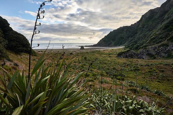 Karekare Beach in the Waitakere Ranges Regional Park west of Auckland