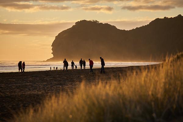 Evening walks on Piha Beach in the Waitakere Ranges Regional Park west of Auckland