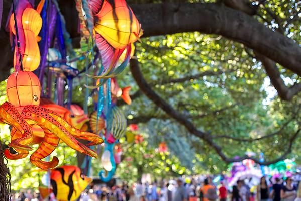 Chinese Lantern Festival in Albert Park