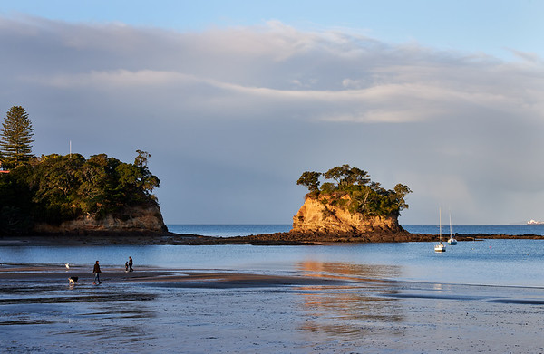 The Tor at Waiake beach in Torbay on Auckland's North Shore with people walking dogs