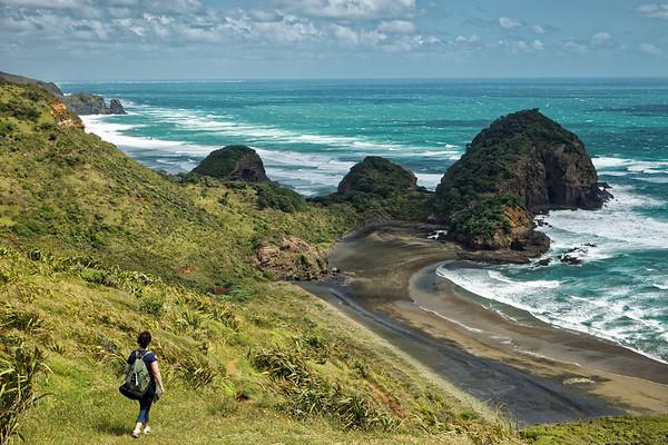 On the Hillary Trail above O'Neil's Beach on Auckland's wild west coast