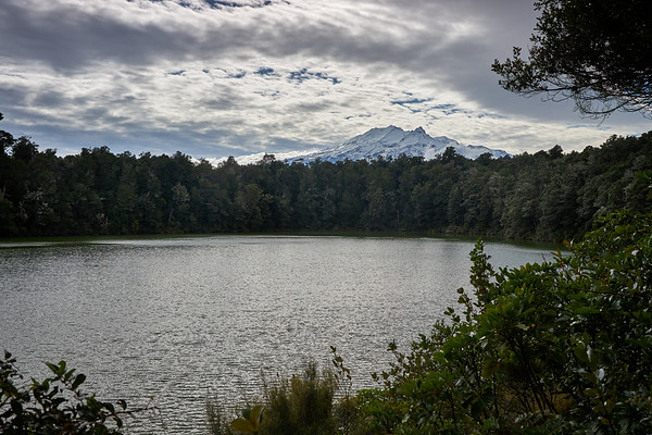 Lake Rotokura in Tongagiro National Park, with beech forest and view to Mt Ruapehu