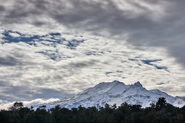 Beech forest and Mt Ruapehu cloudscape