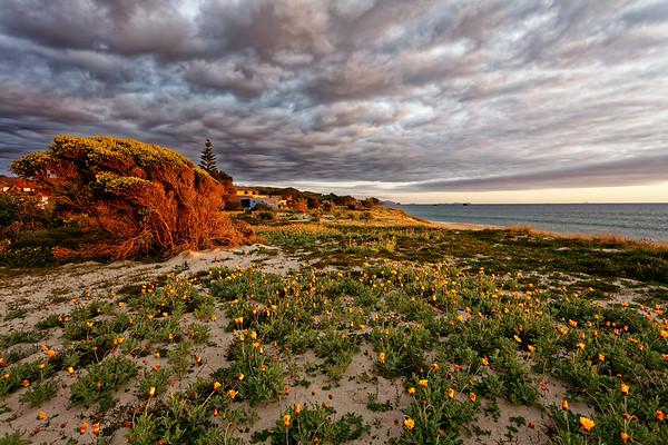 Whirotoa sunrise, Coromandel, New Zealand