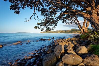 Kuaotunu Beach in the Coromandel