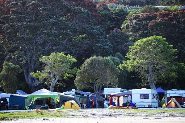 Campground at Mangawhai Heads