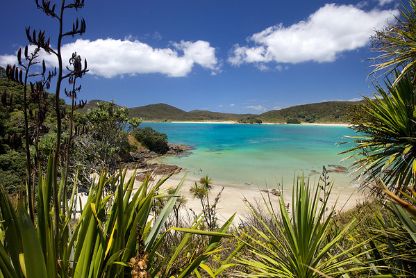 Matai Bay  on the Karikari Peninsula in Northland