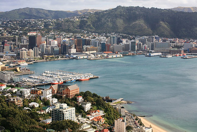 Wellington harbour from Victoria Hill