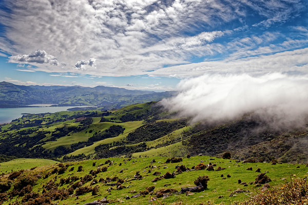 Views on Summit Road above Akaroa Harbour on the Banks Peninsula