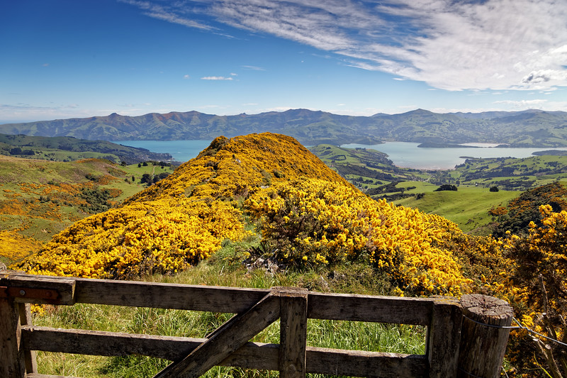 Views on Summit Road  on the Banks Peninsula in New Zealand's South island