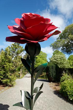 Rose sculpture in Botanical Gardens in Hagley Park, Christchurch