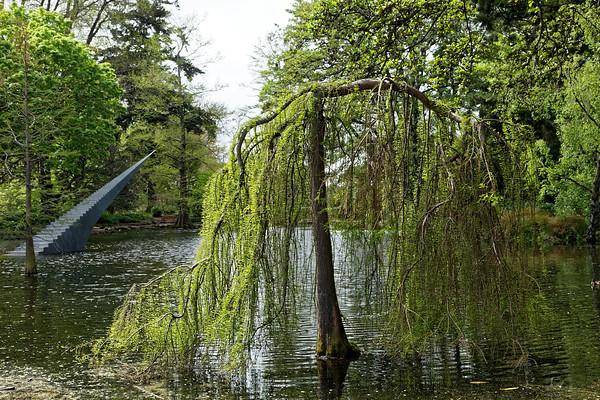 Botanical Gardens in Hagley Park, Christchurch