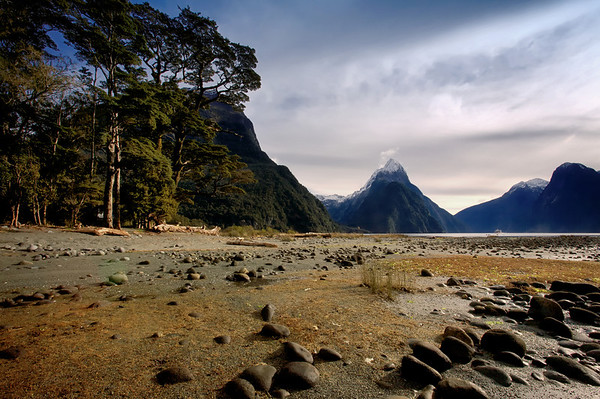 Majesty of Milford Sound