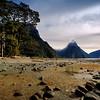 Majesty of Milford Sound