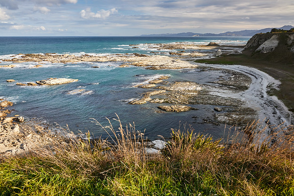 On the Kaikoura Peninsula Walkway which takes you along a spectacular cliff top track above colonies of seals