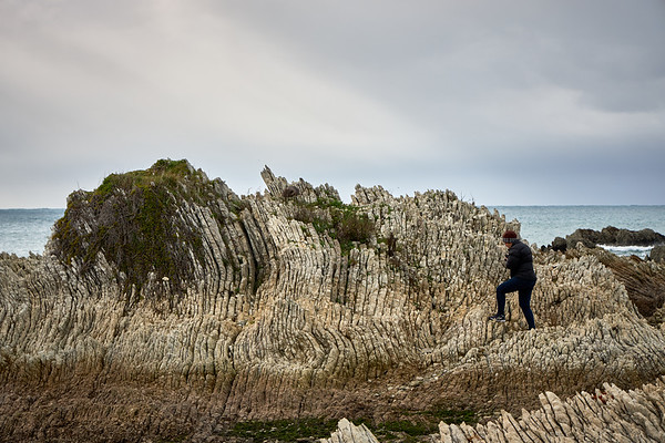 A tourist climbs rock formations in Kaikoura in the South Island, a region famous for its marine life and recent magnitude 7.8 earthquake, where geological forces continue to shape its remarkabe landscape above and below the water