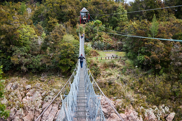 Buller Gorge Swing Bridge, New Zealand's longest swing bridge3