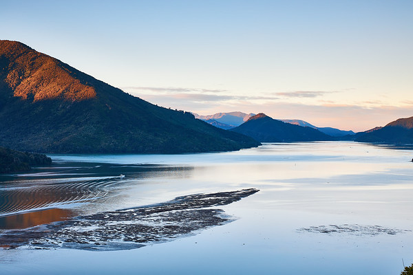 Evening at Queen Charlotte Sound in the Marlborough Sounds in New Zealand's South Island