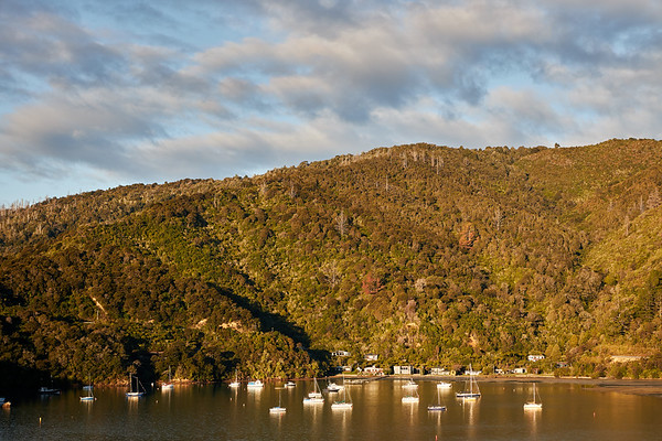Boats at anchor in Ngakuta Bay in Queen Charlotte Sound, Marlborough, in New Zealand's South Island