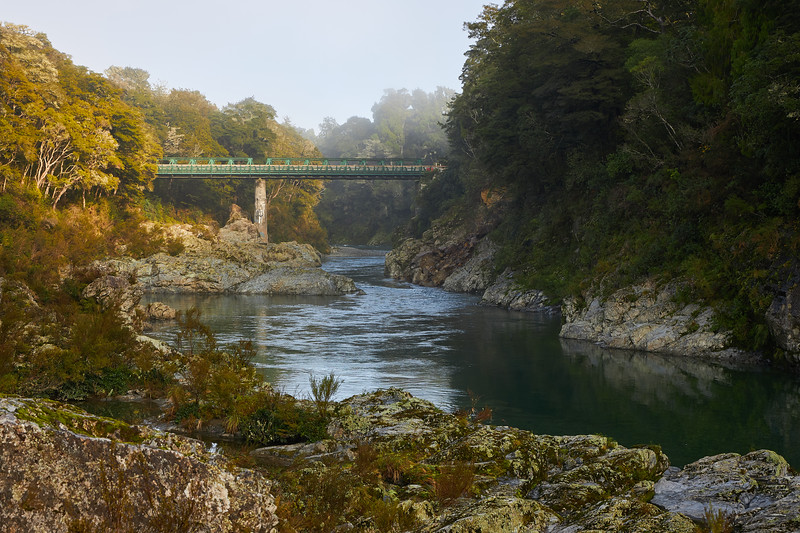 Pelorus Bridge Scenic Reserve near Havelock in Marlborough  in New Zealand's South Island