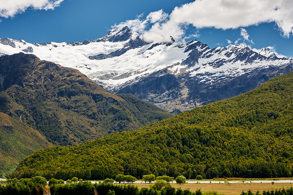 Alpine scenery with beech forest, Mt Aspiring National Park, Otago