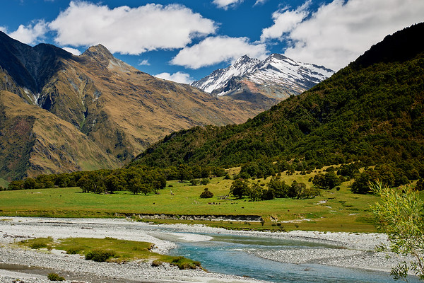 Alpine scenery with the Matukituki River in Mt Aspiring National Park, Mt Aspiring National Otago