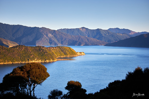 View from the head of the Marlborough Sounds down Queen Charlotte Sound from the nature sanctuary of Motuara Island