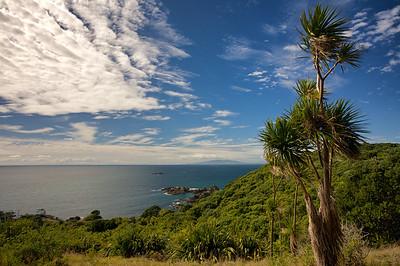 East coast view at Tiritiri