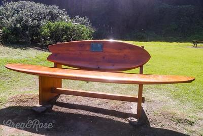 Surf Seat at Maori Bay