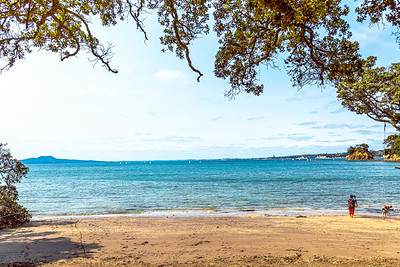 In the distance is the entrance to the Waitemata Harbour
