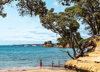 Winstone's Beach, A Nana , Grandsons, Tree, Rope Swing and the Sea