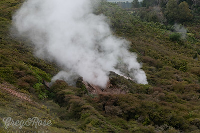 Steam vent at the Crater of the Moon Taupo